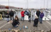 Nibe Sejlklubs Venner donerer storsejl til skolebåd-